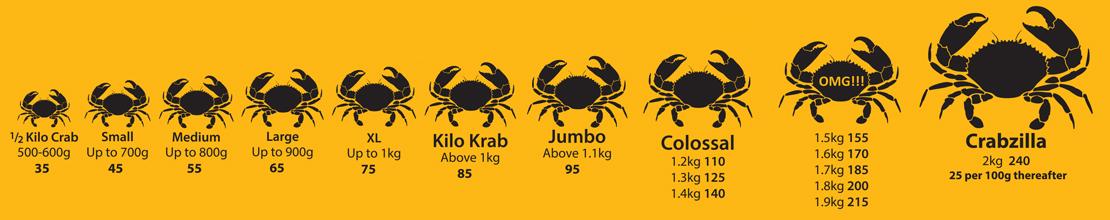 crab-image